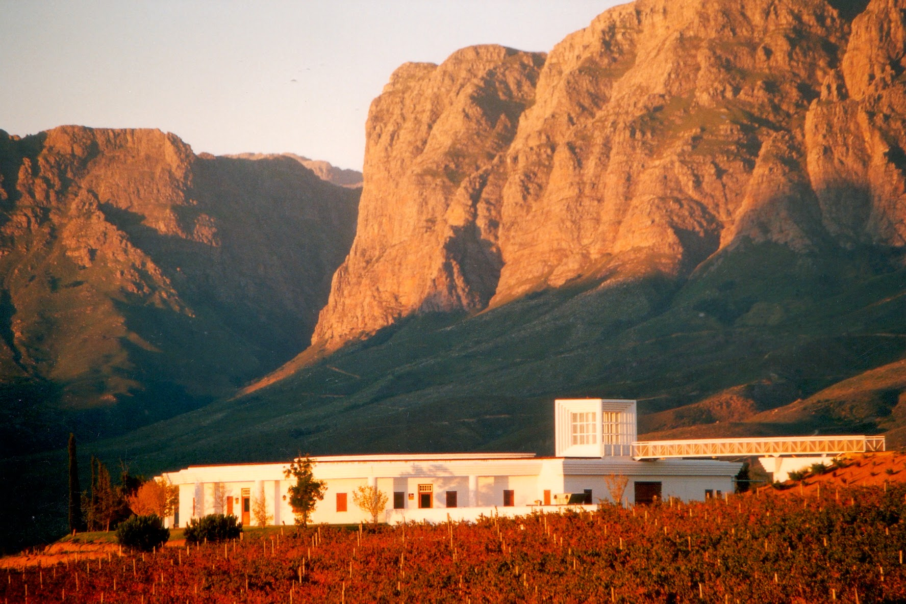 Vergelegen Winery and mountains